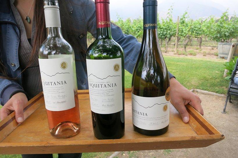 Chile Wines Aquitania Tasting