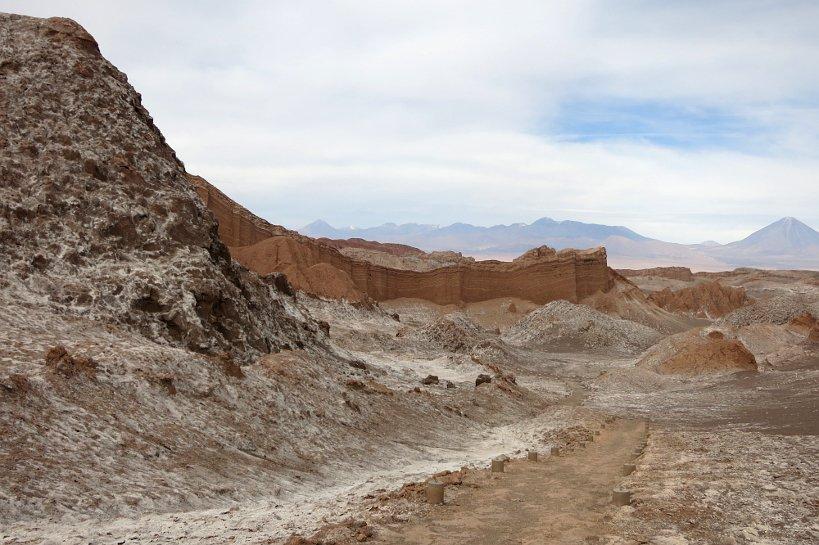 Food of the desert Valle de la Luna