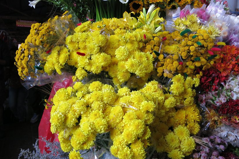 Cusco's market yellow flower