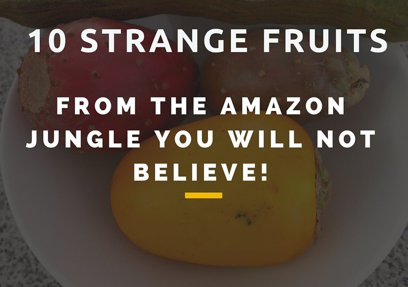 10 Strange Amazonian Fruits Authentic Food Quest