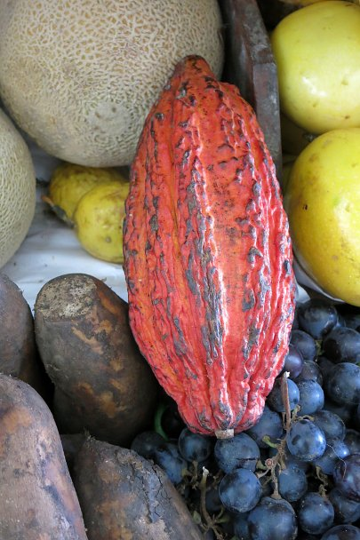 Strange fruits cacao