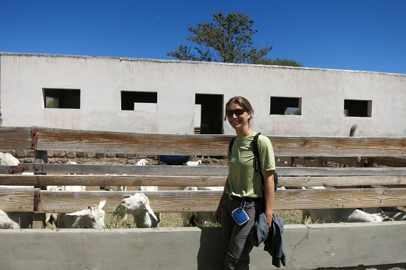 Goat farm barn and Claire at Goats Cabras de Cafayate Authentic Food Quest
