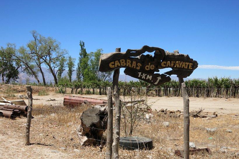 GoatFarm Cabras de Cafayate Sign AuthenticFood Quest