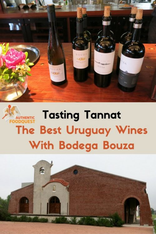 Pinterest TastingTannat The Best Uruguay Wines With BodegaBouza Authentic Food Quest