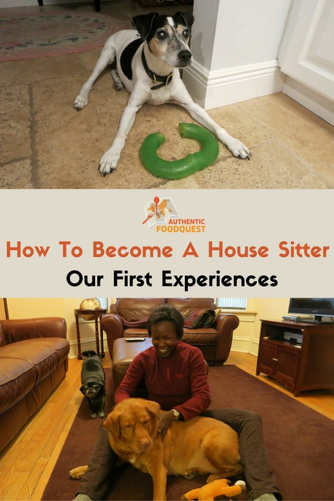 Pinterest_HowToBecomeA HouseSitter_OurFirst Experience