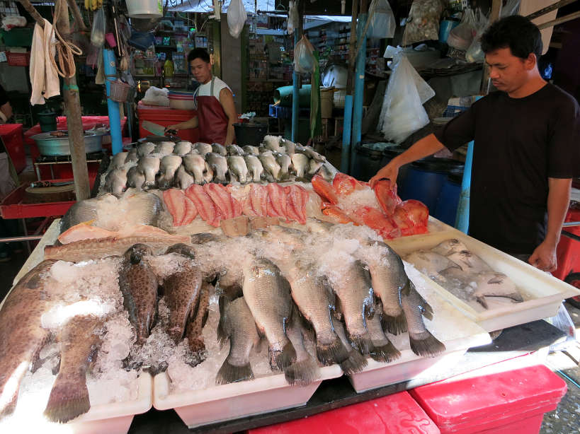 Khlong Toei Fish Stand Bangkok Markets Authentic Food Quest