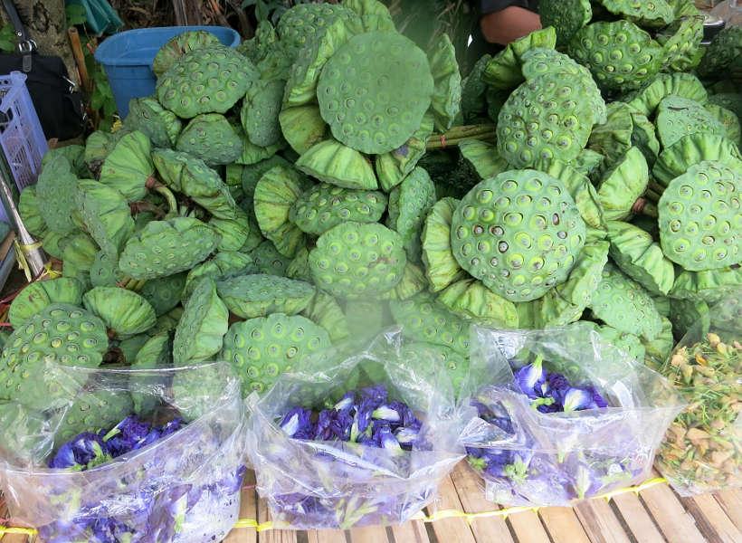 Lotus stems at Bang Krachao Running in Bangkok Authentic Food Quest