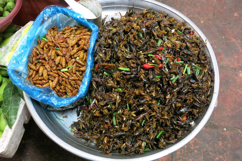 Bugs Cambodian Street Food Authentic Food Quest