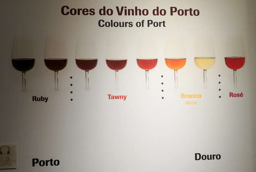 Colors Port Wine at Port Institute Porto Authentic Food Quest