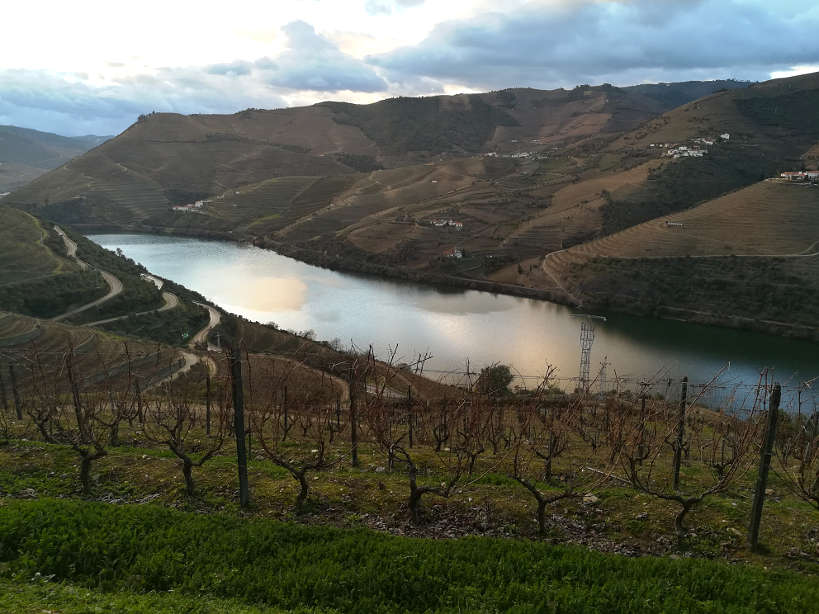 Douro Valley near Porto Authentic Food Quest