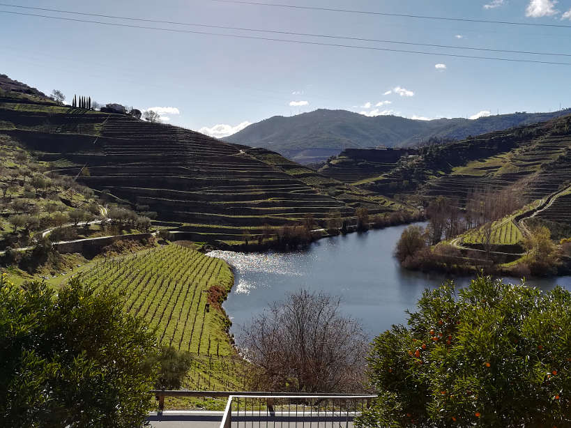 Tedo River Douro Valley Authentic Food Quest