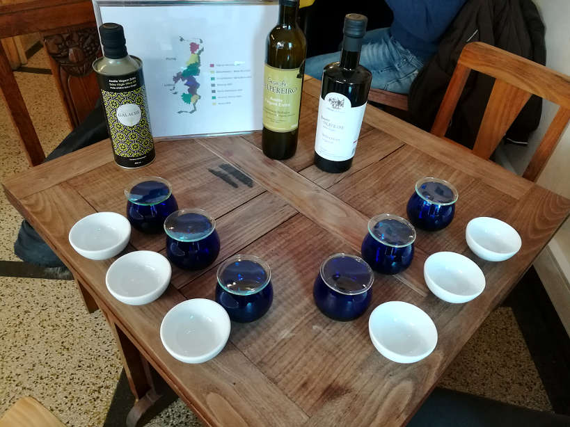 Olive Oil Tasting Porto Walking Tour Authentic Food Quest