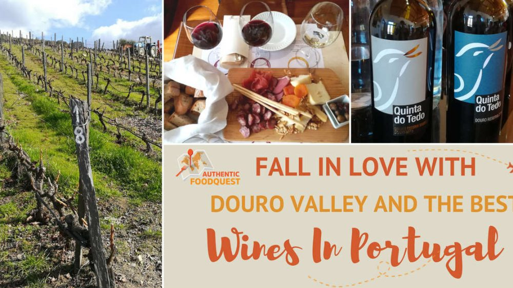 Douro Valley Wines Portugal Authentic Food Quest