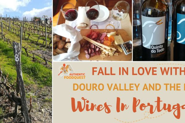 Fall in Love with Douro Valley and the Best Wines in Portugal