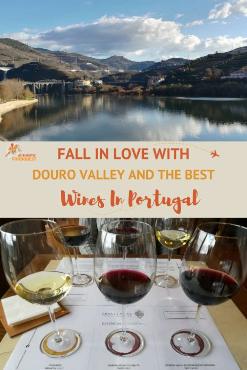 Pinterest Douro Valley Wines Authentic Food Quest