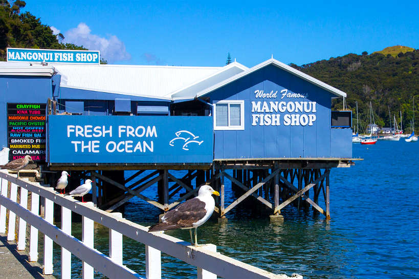 Mangonui New Zealand Fish Shop Authentic Food Quest