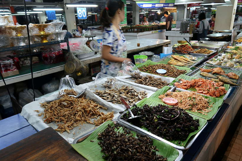 Cricket and Worms Stall at Siri Wattana Market on Chiang Mai Food Tour A Chefs Tour by Authentic Food Quest