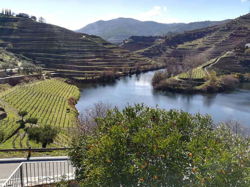 View from Quinta Tedo in the Douro Valley Portugal Travel Guide