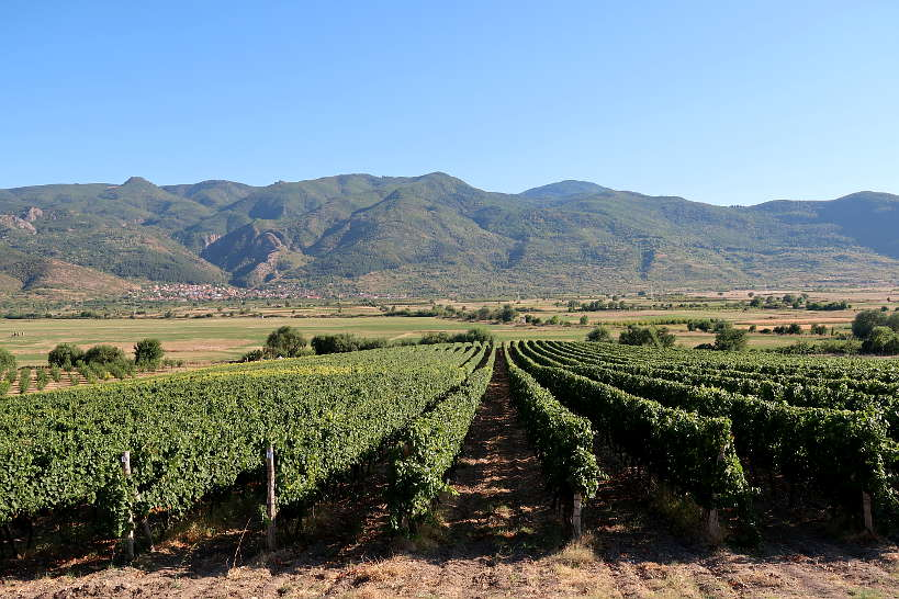 Villa Yustina Winery in the Thracian Valley Bulgaria by Authentic Food Quest