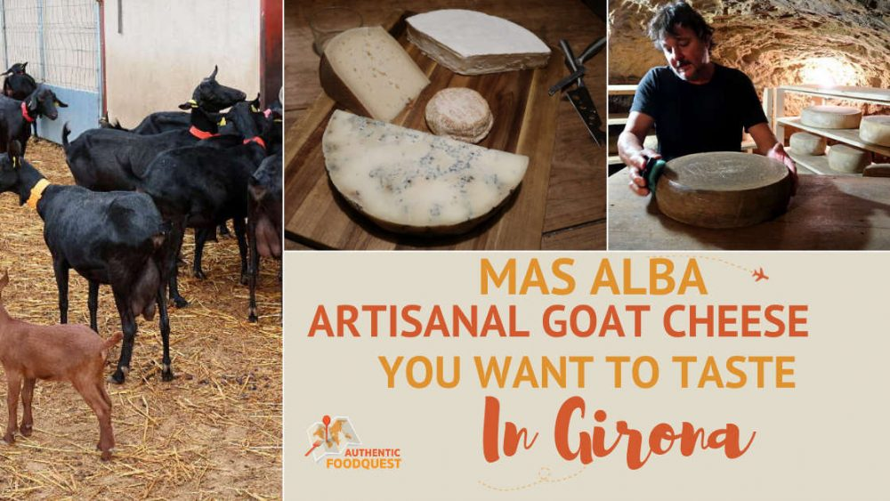 Cheese tasting at Mas Alba by AuthenticFoodQuest