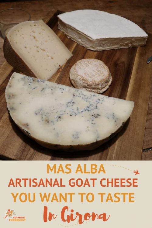 Pinterest Mas Alba Cheese Tasting in Girona Spain Authentic Food Quest