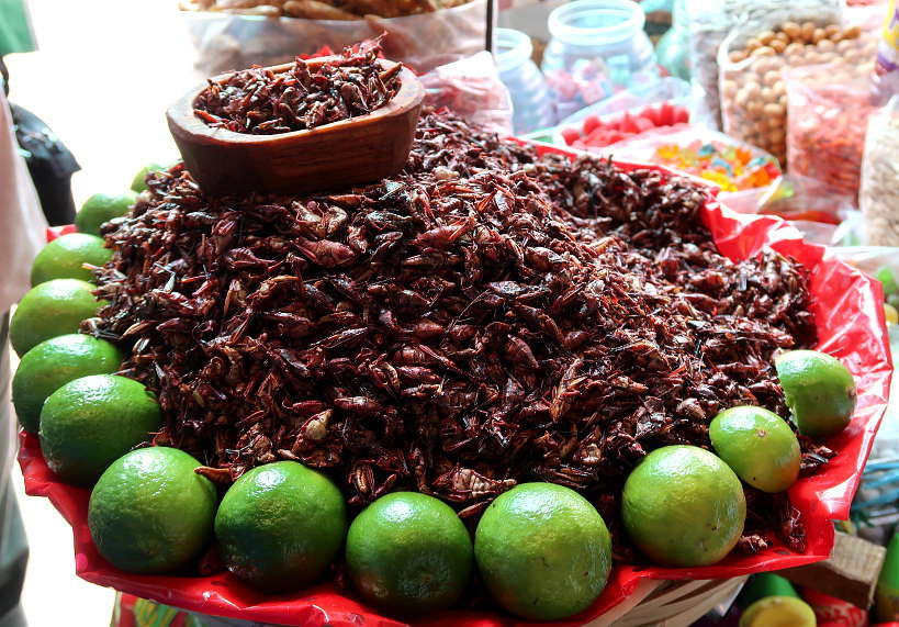 Grasshoppers on a Mexico City Food Tour at Mercado de Jamaica by FoodToursinMexicoCity AuthenticFoodQuest