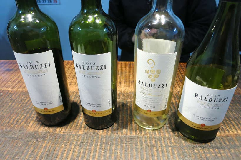 Chilean wine tasting at Baluduzzi by Authentic Food Quest