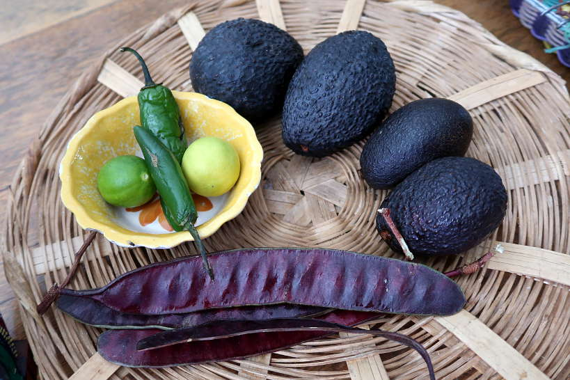 Mexican avocados for authentic mexican guacamole by Authentic Food Quest