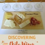 Chile Wines of Maipo Valley By Authentic Food Quest