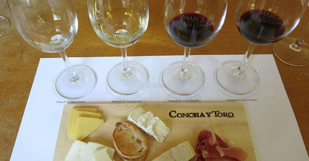Maipo Valley Wineries and Santiago Wine Tours by Authentic Food Quest