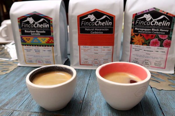 Finca Chelin Oaxaca Coffee Mexico by Authentic Food Quest