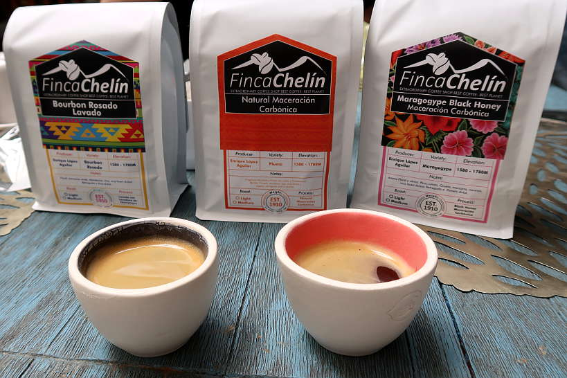 Finca Chelin Coffee for Oaxaca Coffee Mexico by Authentic Food Quest