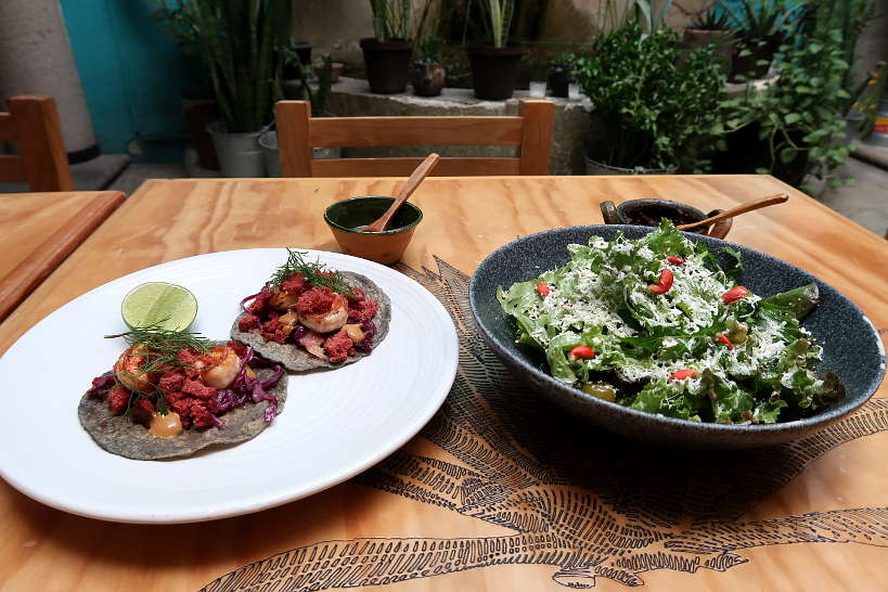 Meal at Tendajon creative restaurant in Oaxaca by Authentic Food Quest