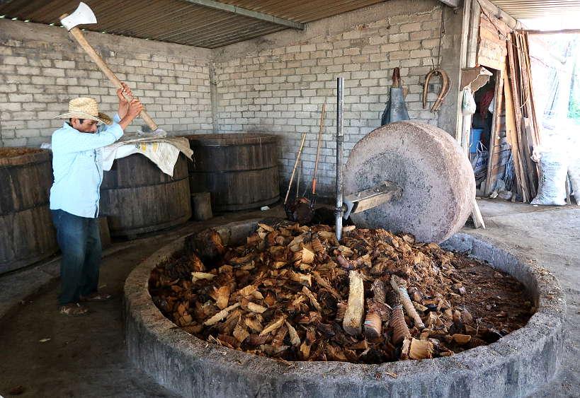 Visiting Geu Beez Distillery on Oaxaca Mezcal Tour by Authentic Food Quest