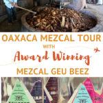 Guee Beez Palenque Visit Mezcal Tour Oaxaca by AuthenticFoodQuest