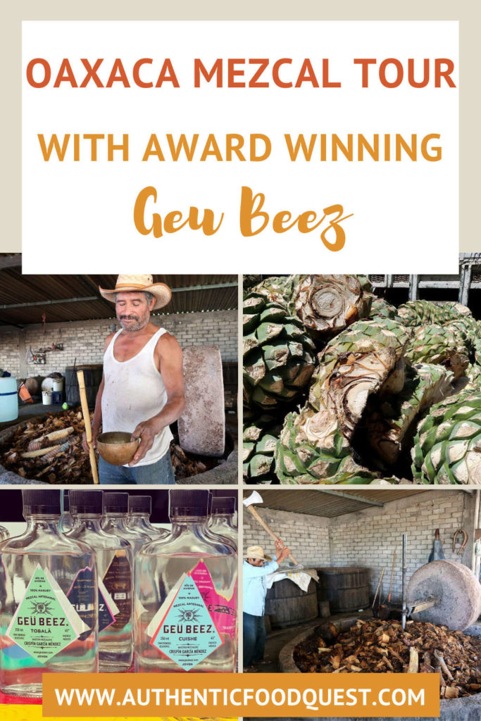 Guee Beez Palenque Visit Mezcal Tour in Oaxaca by AuthenticFoodQuest