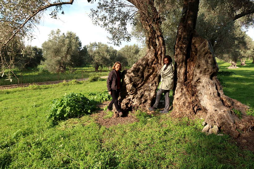 Claire and Rosemary olive oil tasting Crete by Authentic Food Quest