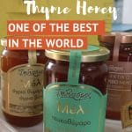 Honey From Greece by AuthenticFoodQuest