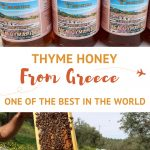 Thyme Honey from Greece by AuthenticFoodQuest