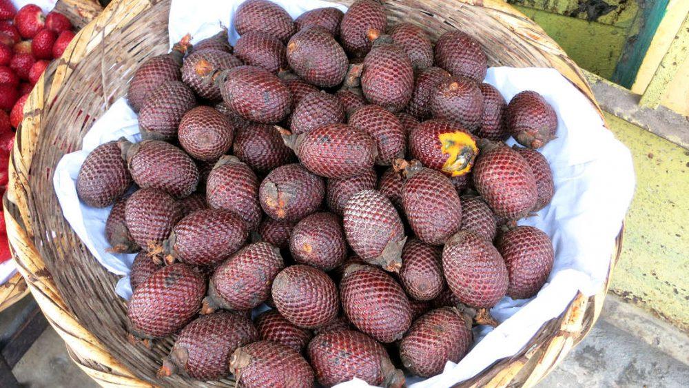 1200 Aguaje jungle fruit by Authentic Food Quest