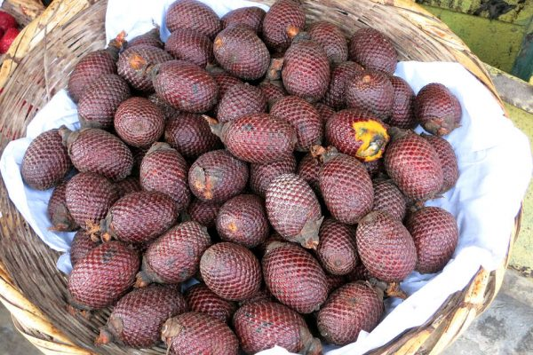 1200 Aguaje jungle fruit by Authentic Food Quest