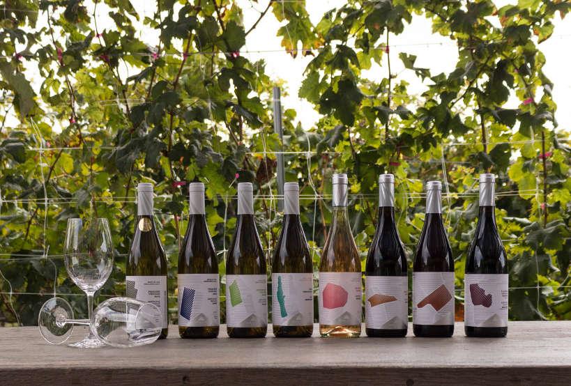 Lyrarakis Wines Crete Single Area Range by AuthenticFoodQuest