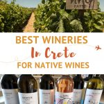Crete Wineries in Greece by AuthenticFoodQuest
