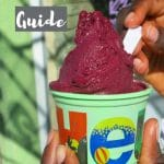 Ice cream one Food in Patagonia not to miss by AuthenticFoodQuest