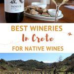 Tasting Wine Crete by AuthenticFoodQuest