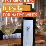 Wine tasting at a Loupakis winery Crete_AuthenticFoodQuest