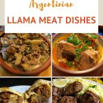 Llama Meat Dishes by AuthenticFoodQuest