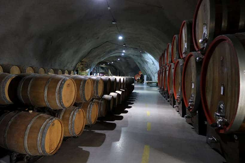 Plantaze Winery Montenegro by Authentic Food Quest